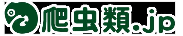 爬虫類情報サイト 爬虫類.jp