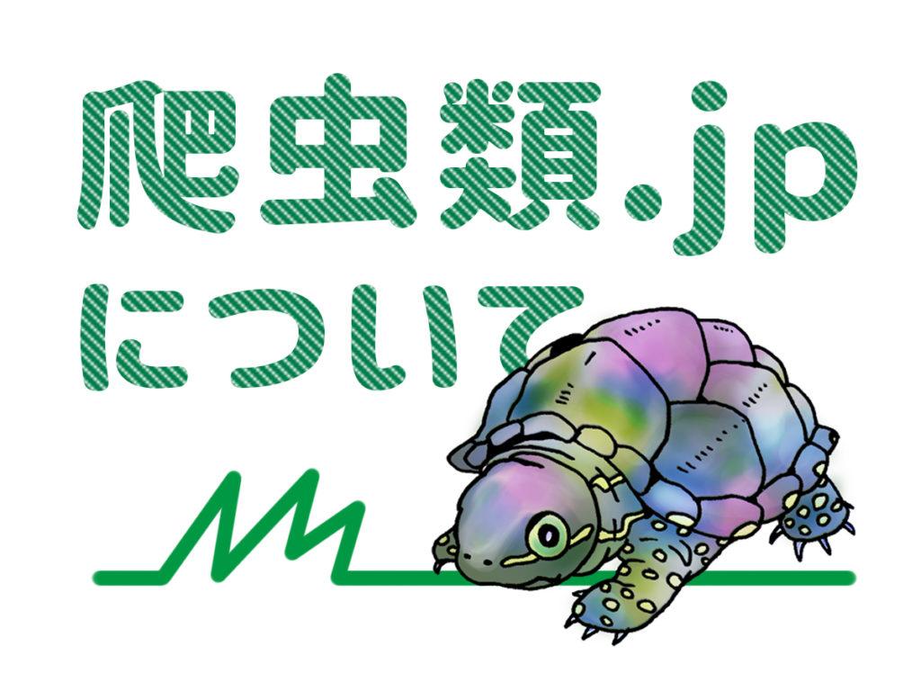 爬虫類.jpとは